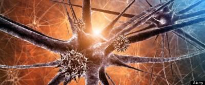 Физики нашли доказательство, что Вселенная - это гигантский мозг