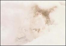 Результаты анализов оранжевого снега на Закарпатье