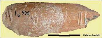 Предки людей создавали символы