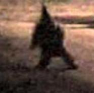 Призрак терроризирует городок в Аргентине (ФОТО)