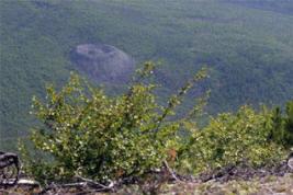 Ученые разгадали загадку Тунгусского метеорита