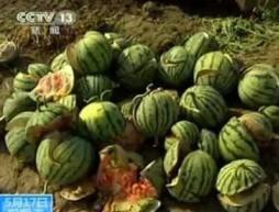 В Китае взрываются арбузы