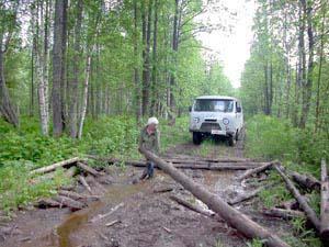 Дорога к логову лешего - заторы да ухабы.