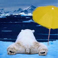 Глобальное потепление приведет к ужасному похолоданию