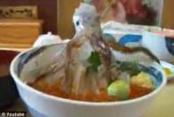 Ужасное блюдо японской кухни (видео)