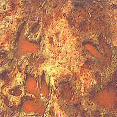 Сибирская аномалия - следы сгинувшей цивилизации