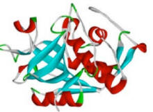 Найдена молекула смерти