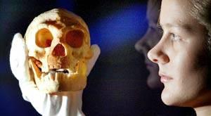 Обнаружен скелет женщины-хоббита